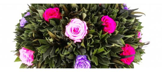 Стабилизированные цветы - неоспоримые плюсы в пользу вечности
