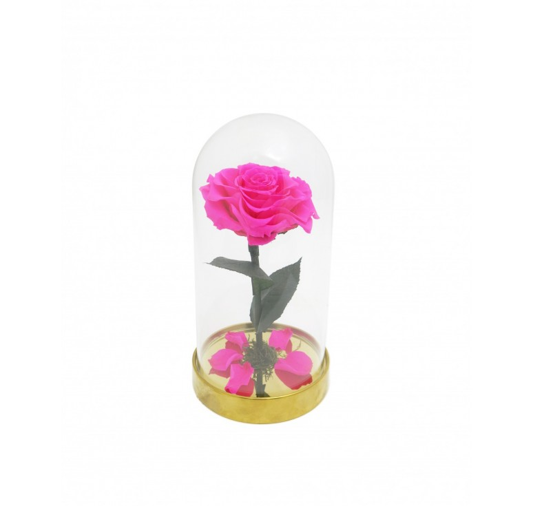 "Роза в колбе розовая ""Красавица и чудовище"""