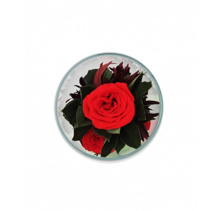 Цвет в стекле