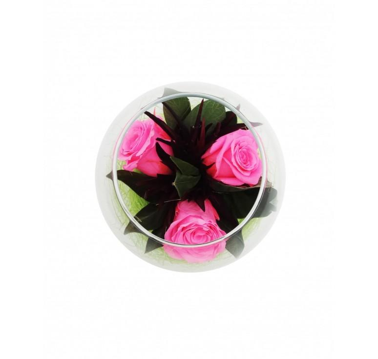 Цветы розовые в стекле