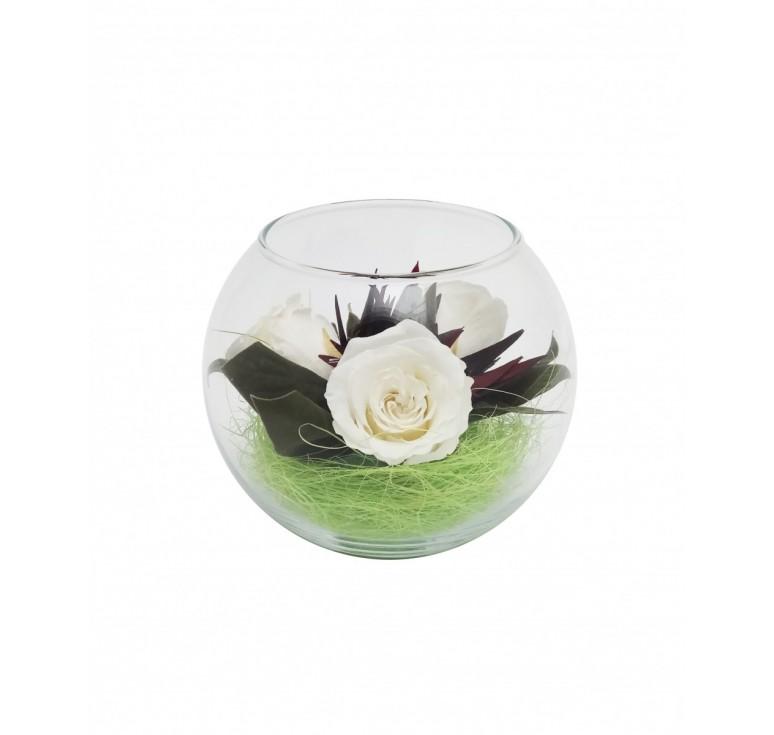 Цветы белые в стекле
