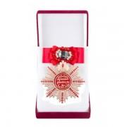 Большой Орден Лучший учитель(красный бант, брошь)