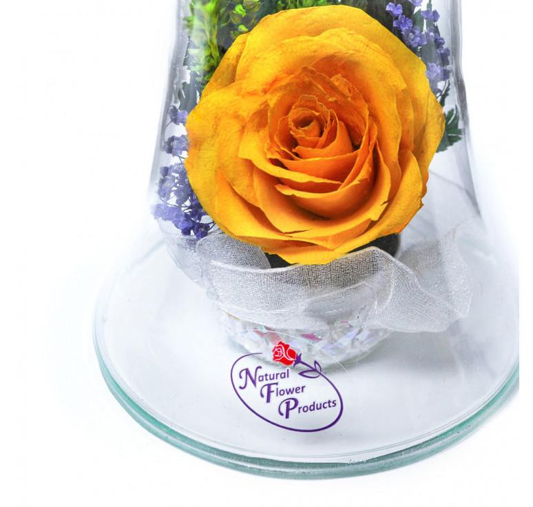 Композиция «Колокольчик» из натуральных роз в подарочной упаковке
