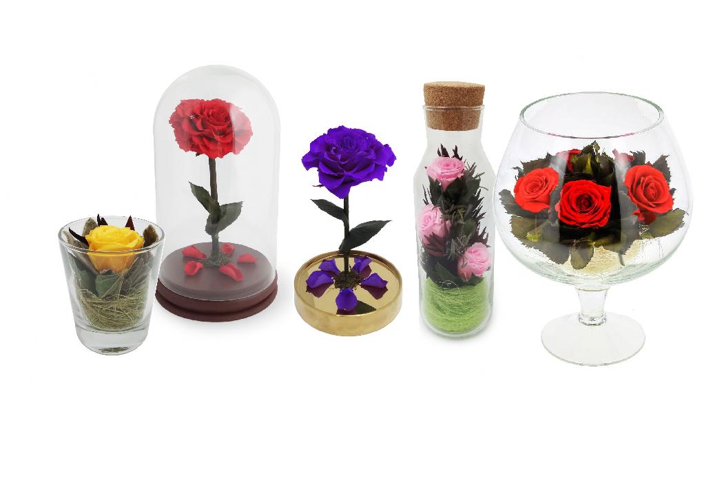 Москве онлайн, где купить стабилизированные цветы в самаре